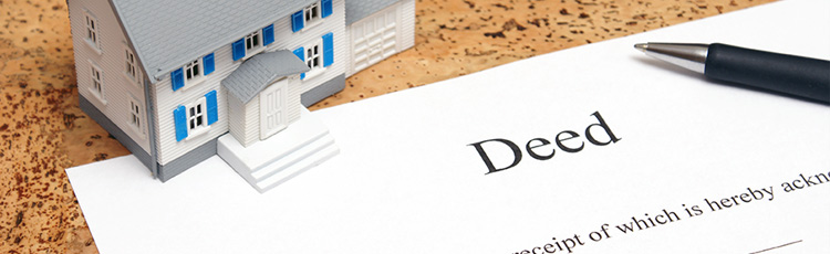 Title Deed Search
